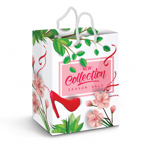 custom printed Laminated Full Colour Paper Carry Bags