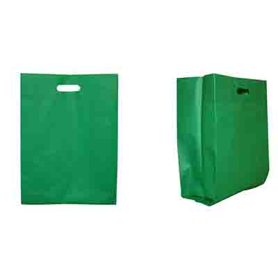 Printed Green Non Woven Large Gift Bag Online in Perth
