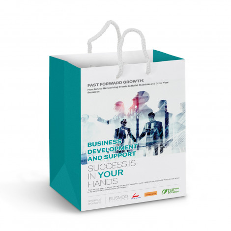 Promotional Laminated Medium Paper Carry Bags